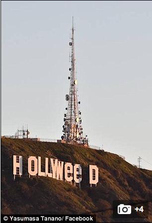 Holleweed Sign