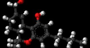 sistema endocannabinoide thc