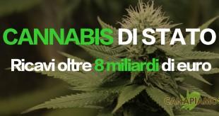 Cannabis di stato