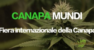 Canapa Mundi