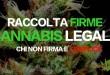 raccolta firme cannabis legale