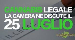 cannabis legale = la camera ne discute il 25 luglio