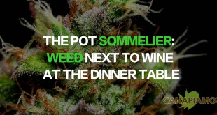 The Pot Sommelier: Weed Next to Wine at the Dinner Table
