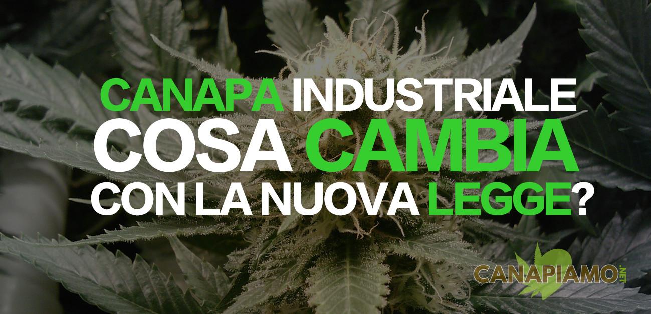 canapa-industriale-nuova-legge