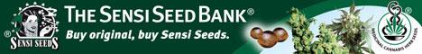 Sendi Seeds