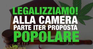 Legalizziamo! Radicali, OK della Camera alle firme sulla legge popolare