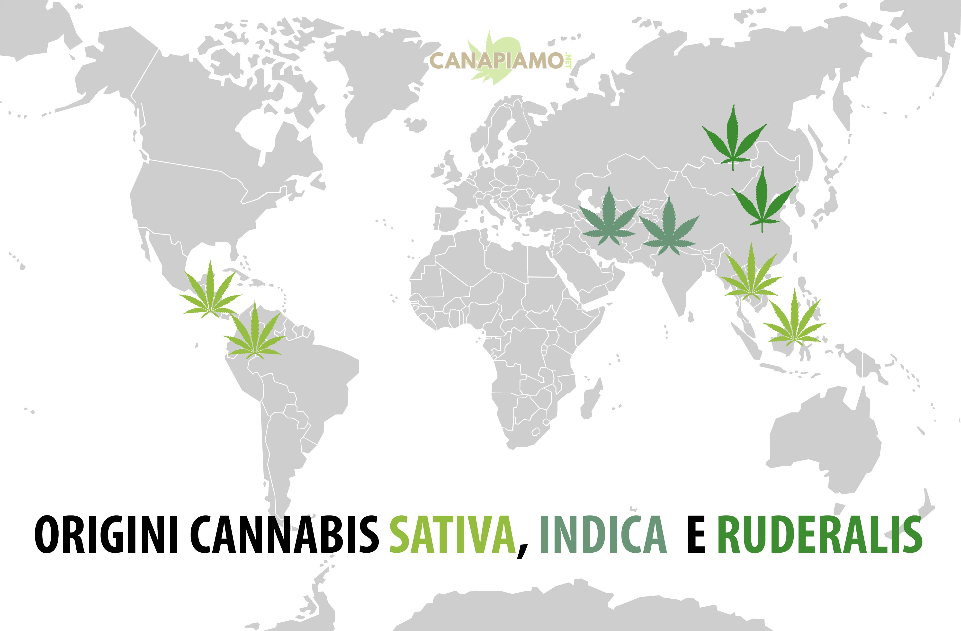 Cannabis Sativa Indica Ruderalis mappa