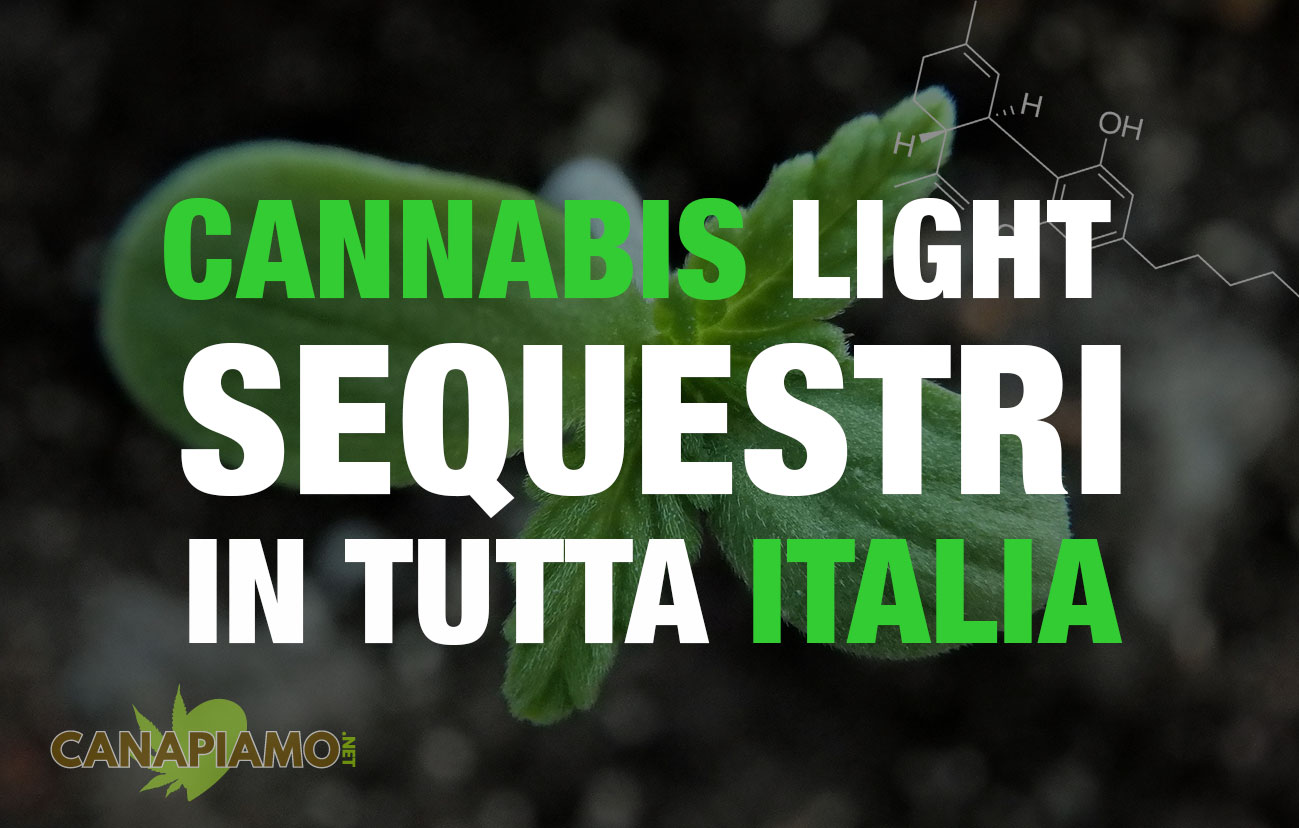 """Cannabis light"" sequestri in tutta italia"
