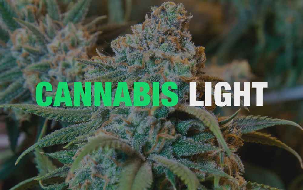Cannabis Light